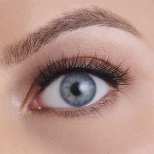 True Glue - Eco Chic Lashes: Orchid-11638